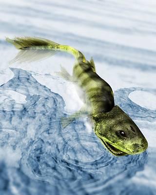 Tiktaalik Prehistoric Fish, Artwork Poster