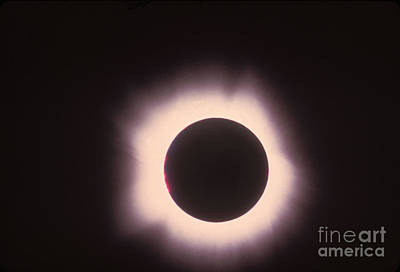 Total Solar Eclipse With Corona Poster