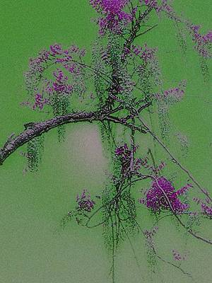 Poster featuring the photograph Wisteria by Holly Martinson