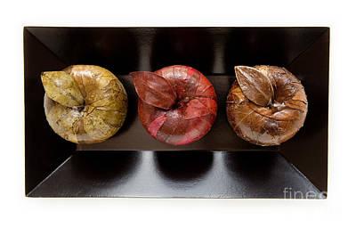 3 Apples Poster by Igor Kislev