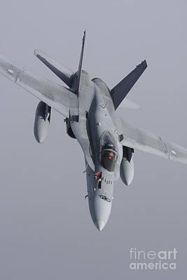 Fa-18 Hornet Of The Finnish Air Force Poster