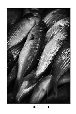 Fresh Fish At The Market Poster by Zoe Ferrie