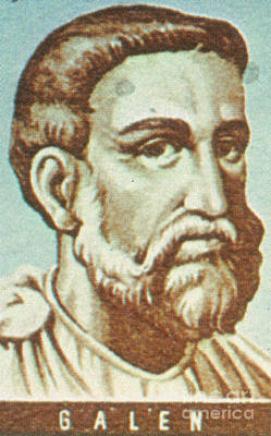 Galen, Greek Physician And Philosopher Poster by Science Source