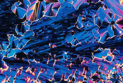 Liquid Crystalline Dna Poster by Michael W. Davidson