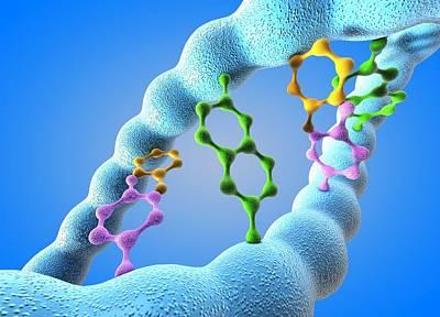 Dna Molecule Poster by Pasieka
