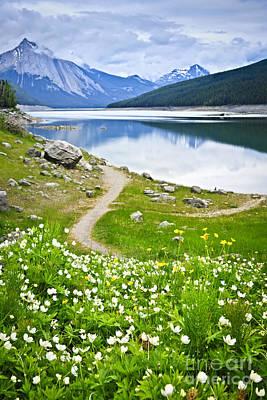 Mountain Lake In Jasper National Park Poster by Elena Elisseeva