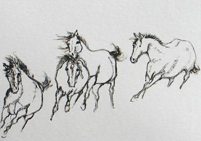 4 Wild Horses  Poster by Elizabeth Parashis