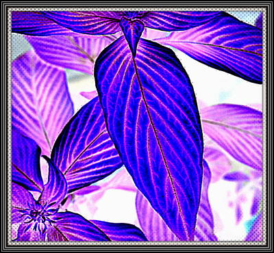 Leaves Poster by Anand Swaroop Manchiraju