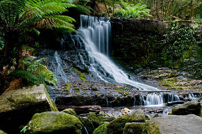Waterfall In Deep Forest Poster
