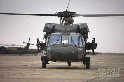 A Uh-60 Black Hawk Taxis Poster by Terry Moore