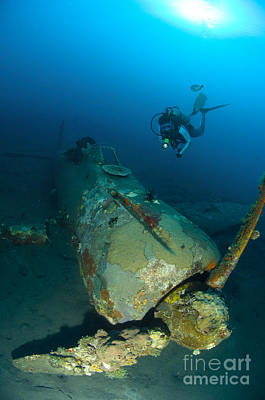 Diver Explores The Wreck Poster by Steve Jones