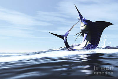 A Blue Marlin Jumps Through The Ocean Poster