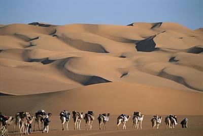 A Camel Caravan Crosses A Landscape Poster
