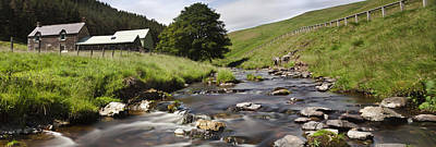 A Creek Running Past Houses Cheviot Poster