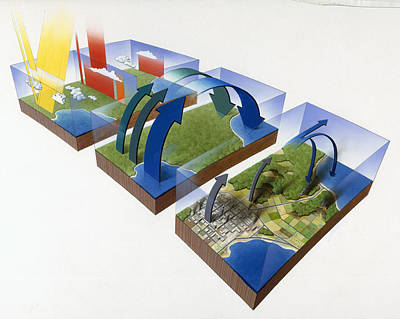 A Diagram Illustrates The Greenhouse Poster by Mark Seidler