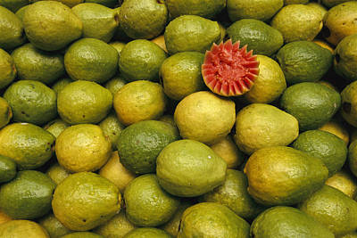 A Display Of Guavas In An Open Air Poster by Richard Nowitz