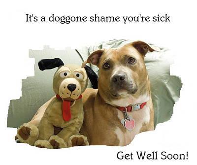 A Doggone Shame Poster