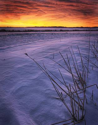 A Golden Winter Sunrise Over Drifted Poster by Dan Jurak