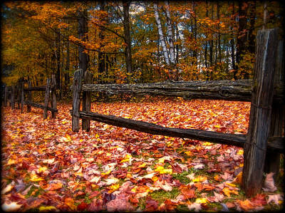 A Log Fence In A Carpet Of Fall Leaves Poster by Chantal PhotoPix