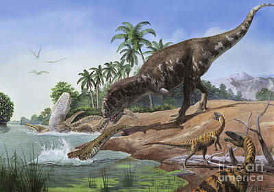 A Majungasaurus Grabs The Tail Poster by Sergey Krasovskiy