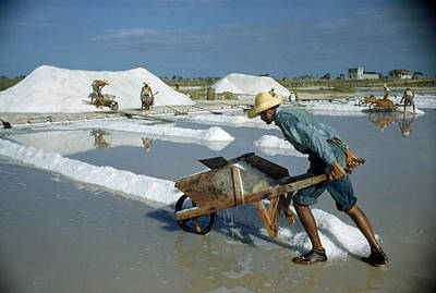 A Man Pushes A Wheelbarrow Of Salt Poster