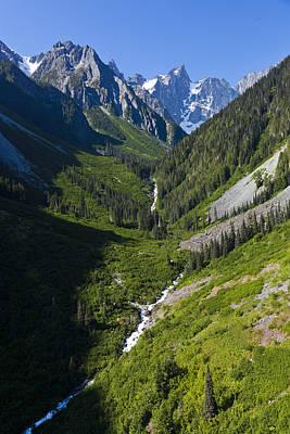 A Mountain Streams Runs Down The Bella Poster
