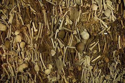 A Pile Of Human Bones In A Churchs Poster