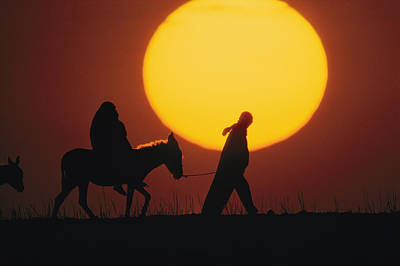 A Silhouetted Man Leads A Donkey Poster