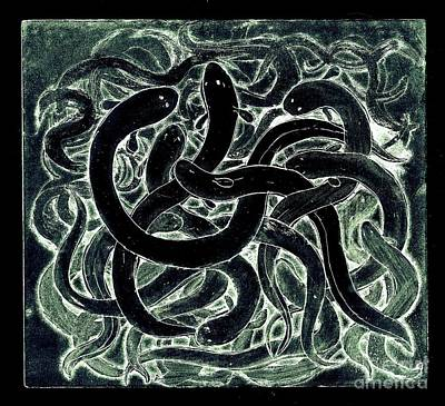 Poster featuring the drawing A Squirm Of Eels by Nareeta Martin