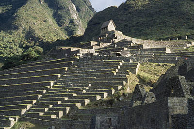 A View Of Stone Terraces At Machu Poster by David Evans