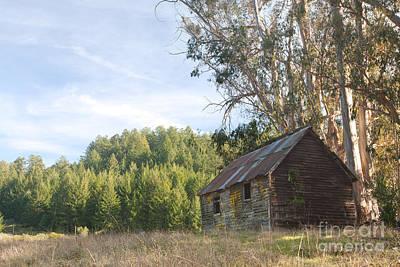 Abandoned Rustic Cabin Poster by Matt Tilghman