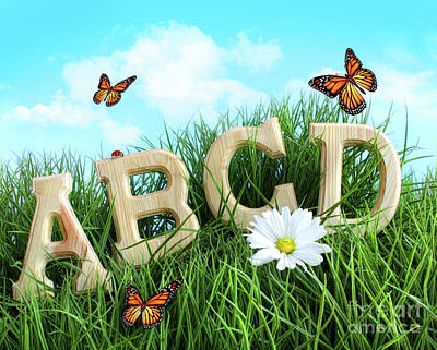 Abc Letters With Daisy In Grass Poster by Sandra Cunningham