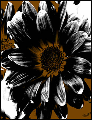 Abstact Camel White And Black Daisy Poster by Angelina Vick