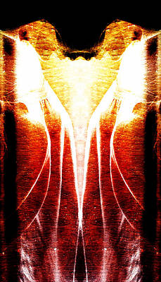Abstract Calyx Poster by Andrea Barbieri
