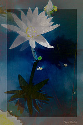 Abstract Lotus 1 Poster by Debra     Vatalaro