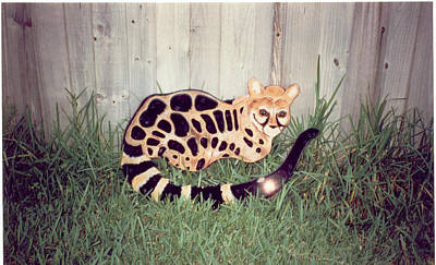 African Genet Poster by Val Oconnor