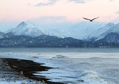 Alaskan Beach At Sunset Poster by Michele Cornelius