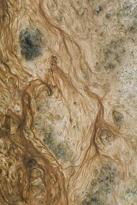Algae And Bacteria In Thermal Runoff Poster