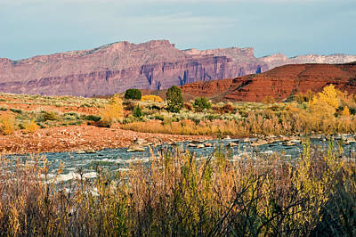 Poster featuring the photograph Along The Colorado River by Geraldine Alexander