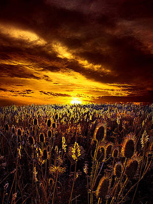 Amazing Grace Poster by Phil Koch