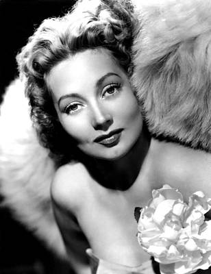 Ann Sothern, Publicity Shot Poster by Everett