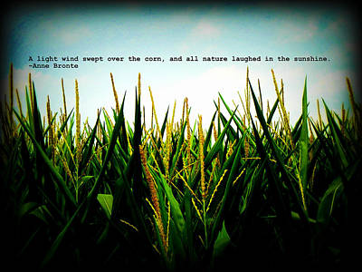 Poster featuring the photograph Anne Bronte's Cornfield by Robin Dickinson