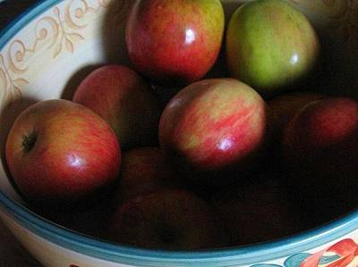 Poster featuring the photograph Apples In Ceramic Bowl by Deb Martin-Webster