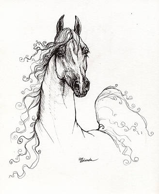 Arabian Horse Drawing 41 Poster