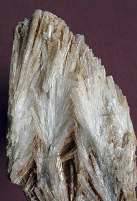 Aragonite Crystals Poster by Dirk Wiersma