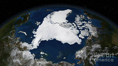 Arctic Sea Ice Poster by Science Source