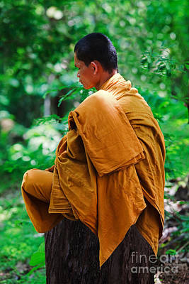 Art Of Meditation II Poster by Pete Reynolds