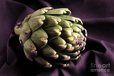 Artichoke Poster by HD Connelly
