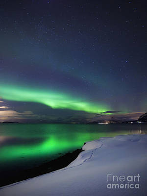 Aurora Borealis Over Vagsfjorden Poster by Arild Heitmann