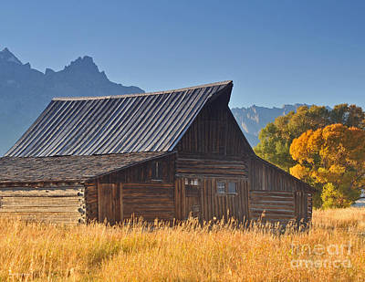 Autumn At The Barn Grand Teton National Park Poster